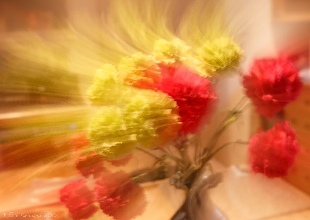 Kitchen flowers – Ellie Kennard 2015
