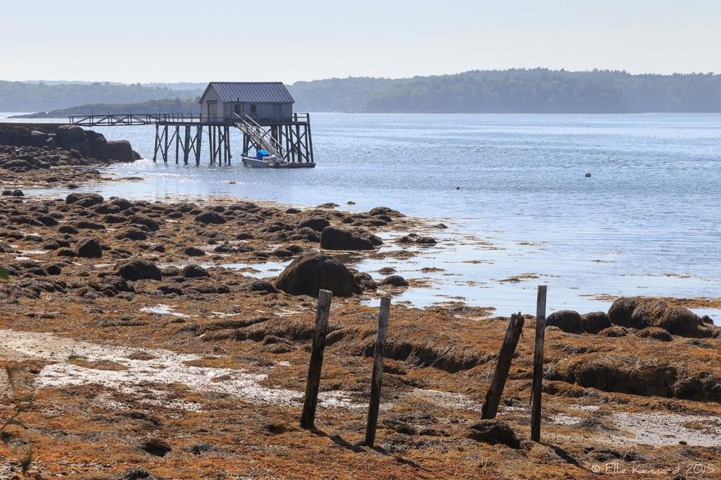 Fishing Wharf, Maine - Ellie Kennard 2015