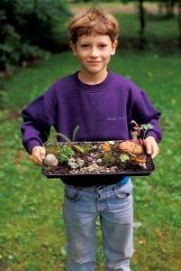 Little boy with his moss garden