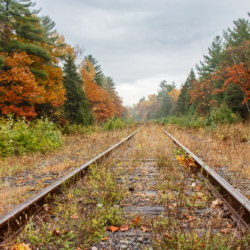 Train tracks in the fall, Photo by  Ellie Kennard 2013
