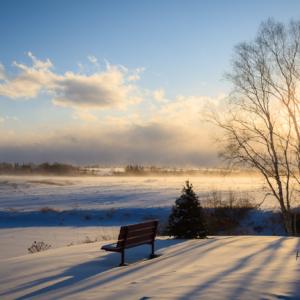 Park Bench with blowing snow - Ellie Kennard 2012
