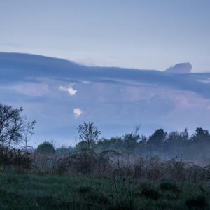 Mist Under Dawn Skies - Ellie Kennard 2012