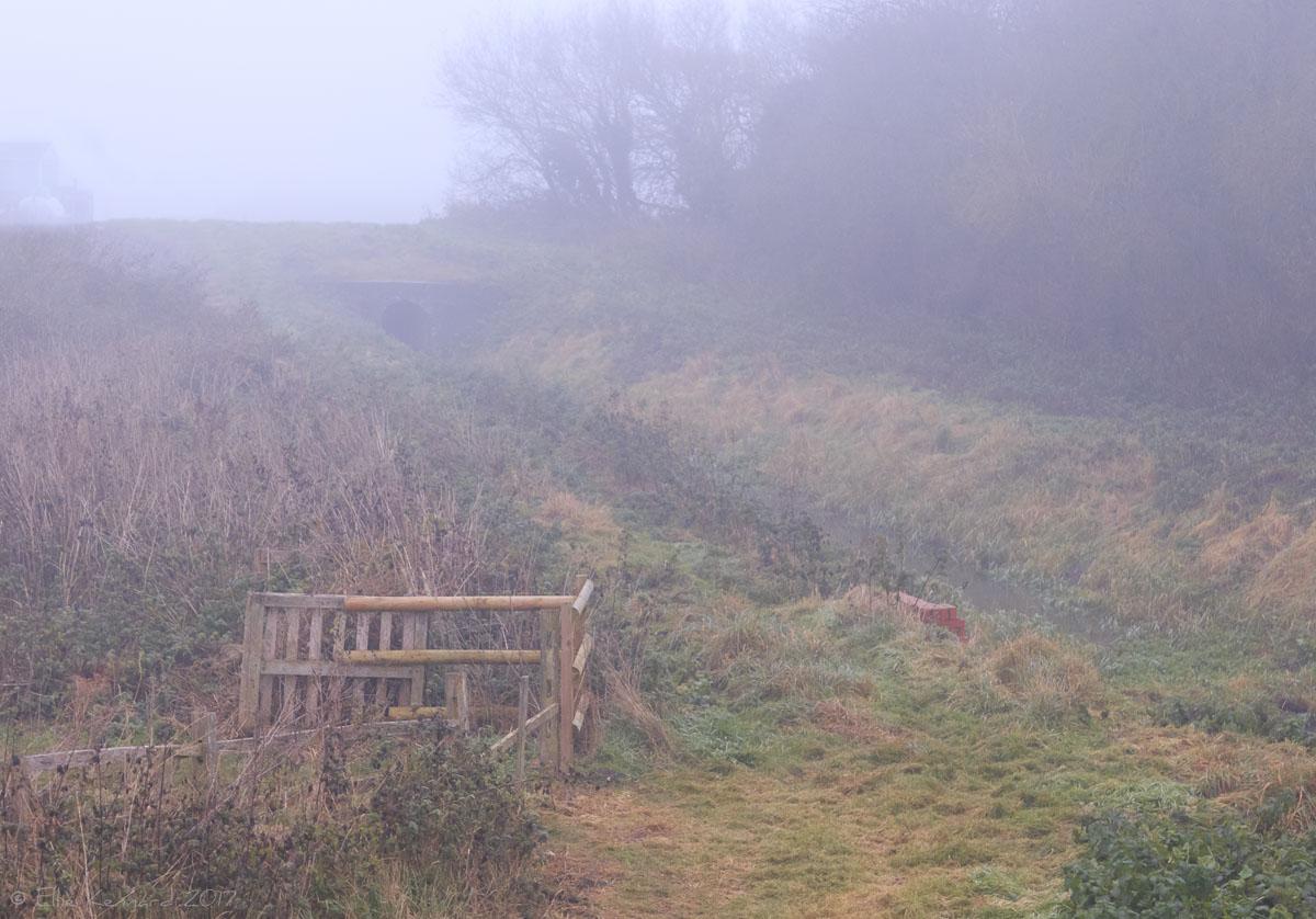 Country walk in the fog - Ellie Kennard 2016