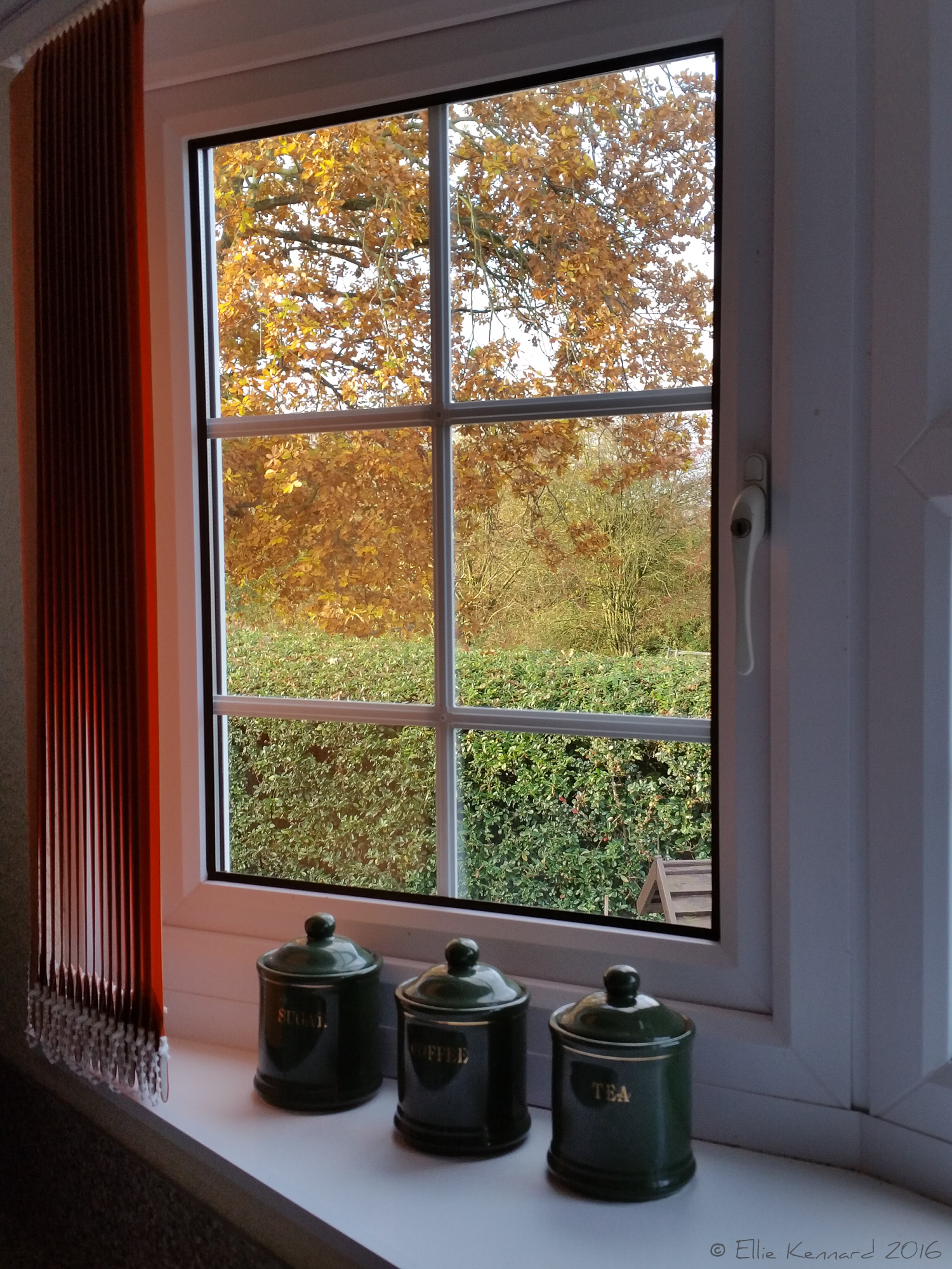 Cottage autumn window - Ellie Kennard 2016