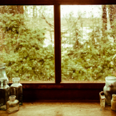Windowsill,  rain and bottles - Ellie Kennard 2012
