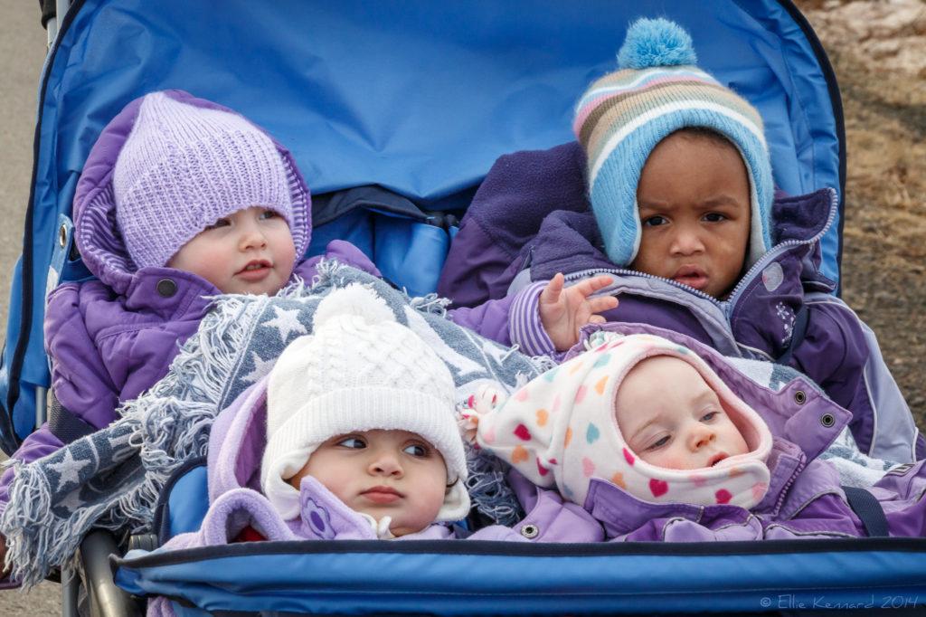 A bag of babies